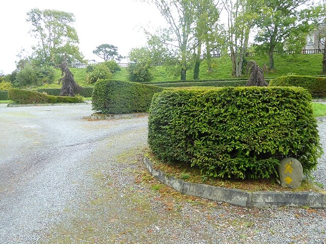 hedge designs curved pattern for local church