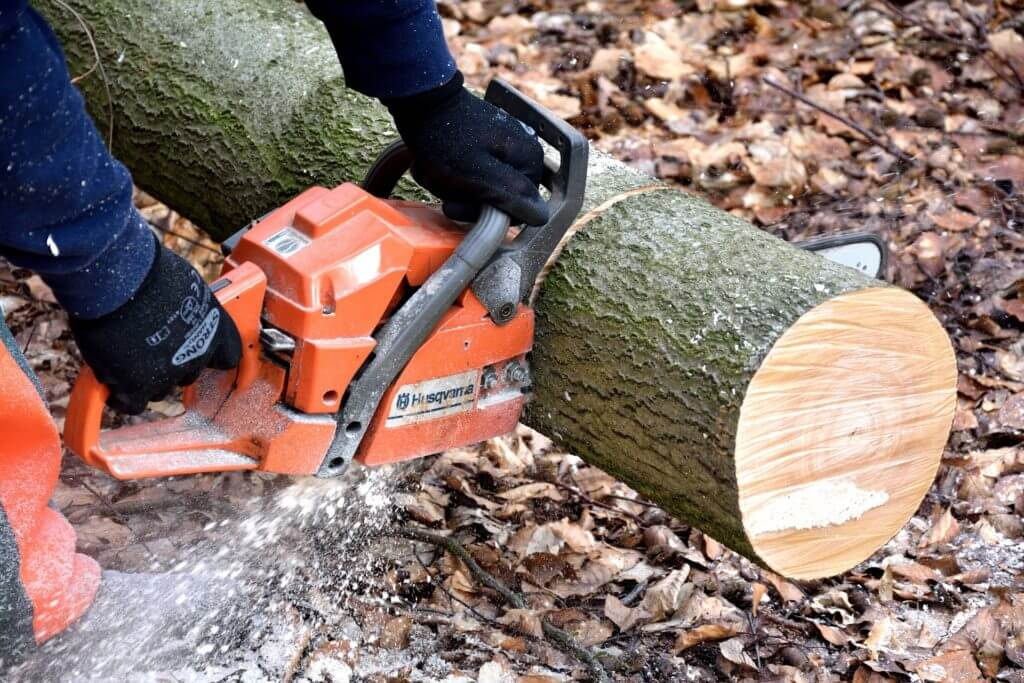 cutting logs of wood using a powerful chainsaw